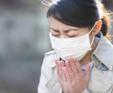 秋に注意したい家の中のダニによるアレルギー